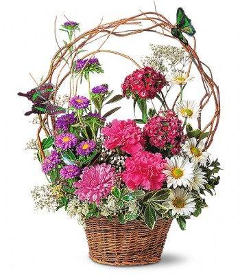 butterfly-basket-flowers