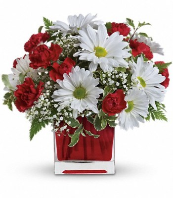 red-and-white-delight-valentines-flowers5
