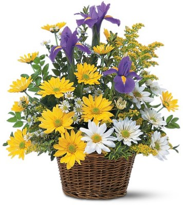 smiling-floral-basket-flowers97